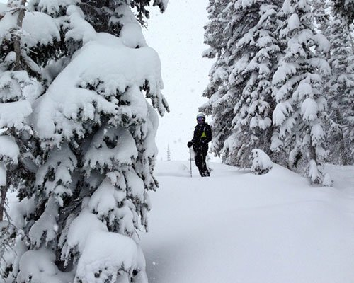 Skiing in Steamboat